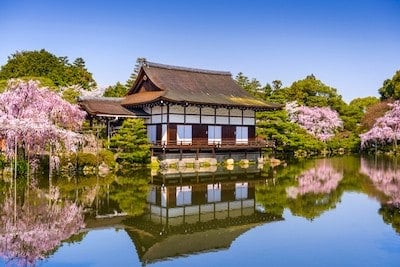 Spring in Japan with Pam, 2018 - the Art of Vacationing